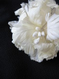 Fether_corsage