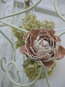 Camellia_rose